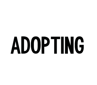 Help by adopting an Animal Image
